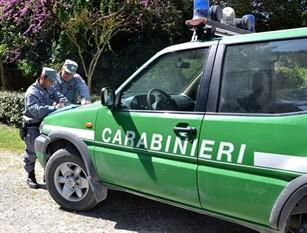 Abbandono di rifiuti. Scattano sanzioni da parte dei Carabinieri Forestali.