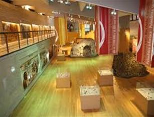 Museo Nazionale del Paleolitico di Isernia. Lavori di somma urgenza a protezione dell'area di scavo Realizzata una tettoia per evitare le  infiltrazioni meteoriche