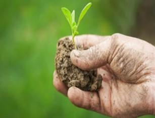 Coldiretti, criticità per agricoltura Molise, nostra proposta inviata già lo scorso autunno