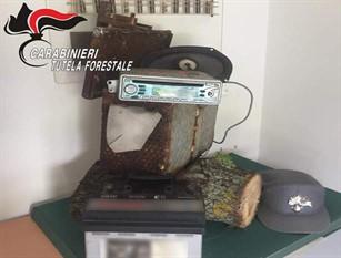 Frosolone, Carabinieri forestali sequestrano richiamo acustico vietato per l'uso venatorio e denunciano una persona.
