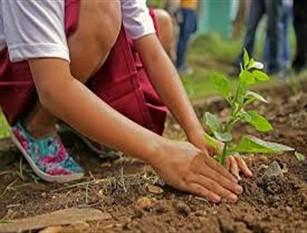 Giornata ecologica sul tema dell'educazione ambientale e la corretta differenziazione dei rifiuti.