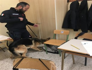 I carabinieri di Agnone hanno effettuato controlli antidroga negli istituti scolastici ed una denuncia per guida sotto l'influenza di Cocaina.