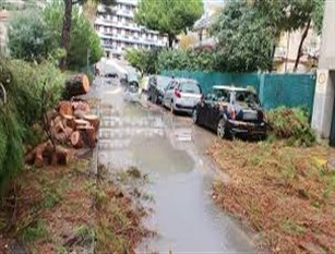 A Roma la Protezione Civile effettua 50 interventi in seguito al maltempo In particolare hanno riguardato alberature e rimozione rami dalle strade