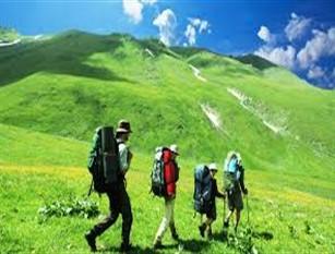 Verde, gli appuntamenti di novembre con trekking e visite guidate a Roma