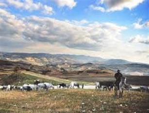 Transumanza patrimonio Unesco, Toma: «Ottimo risultato, complimenti a Carmelina Colantuono e  Nicola Di Niro»