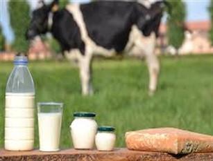 """Forche Caudine, settore lattiero caseario: """"ancora polemiche"""""""