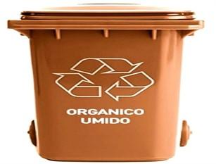 CBasso, rimozione dei bidoni marroni per la raccolta dell'organico nelle zone cittadine ancora non raggiunte dal servizio porta a porta