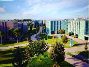 A Tor Vergata nuovo collegamento dedicato tra campus universitario e metro Anagnina Nasce la linea 20L per potenziare l'offerta a studenti e lavoratori nelle ore di punta
