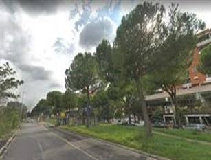 Roma dedica un giardino ai caduti del Corpo Nazionale dei Vigili del Fuoco L'area si trova tra viale Palmiro Togliatti e viale dei Romanisti nel Municipio VI