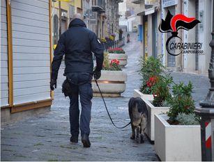 Campobasso, raffica di perquisizioni per la ricerca di droga, I militari del Nucleo Operativo hanno setacciato in lungo e in largo sia il centro storico del capoluogo che altre abitazioni ritenute di interesse operativo