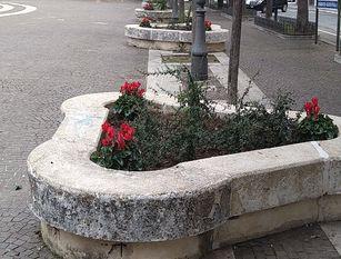 Nuovi allestimenti per le fioriere posizionate su Corso Vittorio Emanuele, nella villa sottostante Palazzo San Giorgio e in Piazza Pepe