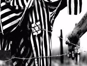 Frosinone: il capoluogo al tavolo contro l'antisemitismo.