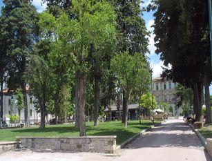 Interventi di sistemazione del verde pubblico alla villa comunale di Isernia