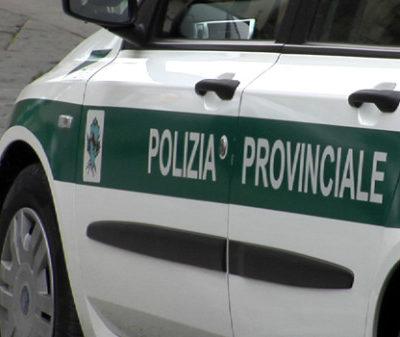 Coronavirus, test sieriologici anche sugli agenti delle polizie provinciali del Lazio Il presidente di Upi Lazio, Antonio Pompeo, invia la richiesta in Regione