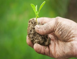 In arrivo 7,5 mln per aziende agricole