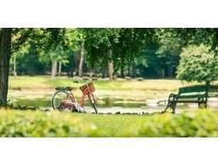 Il verde di Roma si rifà il look. Investiti 12 milioni per la riqualificazione di parchi, giardini e ville storiche Raggi, 20 gare per il restyling: da Villa Sciarra a Villa Fiorelli, da Parco Nemorense a Villa Pamphilj a Villa Borghese