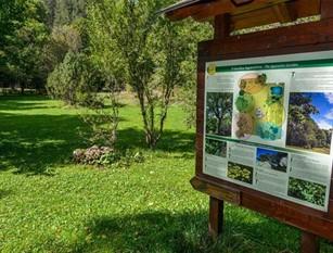 Un drone al servizio del Parco nazionale d'Abruzzo Lazio e Molise Addetti ente, con patentino, potranno controllare area protetta