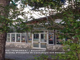 Risultati molto soddisfacenti alle Olimpiadi di Problem Solving per la scuola primaria di Cantalupo nel Sannio dell'Istituto Comprensivo Colozza di Frosolone.