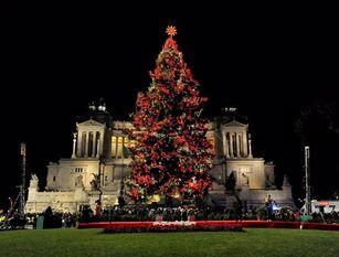 Torna a piazza Venezia 'Spelacchio', l'albero di Natale di Roma Accensione luci con Sindaca Raggi prevista per l'8 dicembre